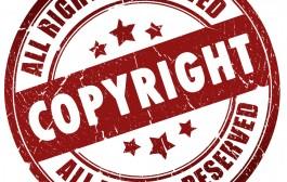 دليل حماية حقوق الملكية الفكرية